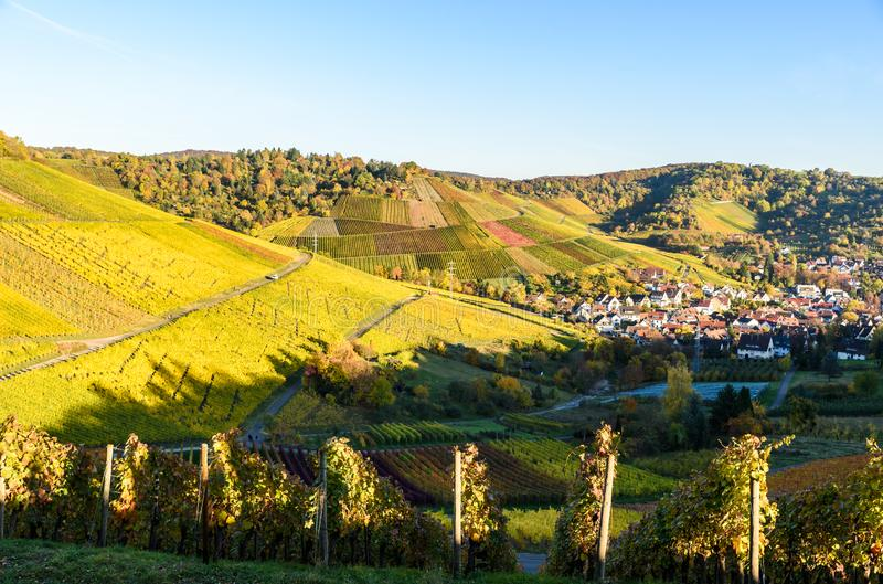 Vineyards at Stuttgart, Uhlbach at the Neckar Valley - beautiful landscape in autum in Germany stock image