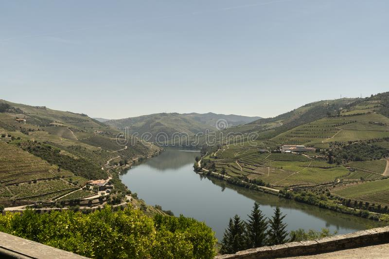 Vineyards in the Valley of the River Douro, Portugal royalty free stock photos