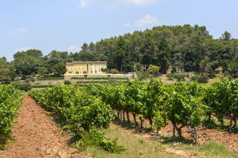 Download Vineyards In Var (Provence) Stock Photo - Image: 37281660