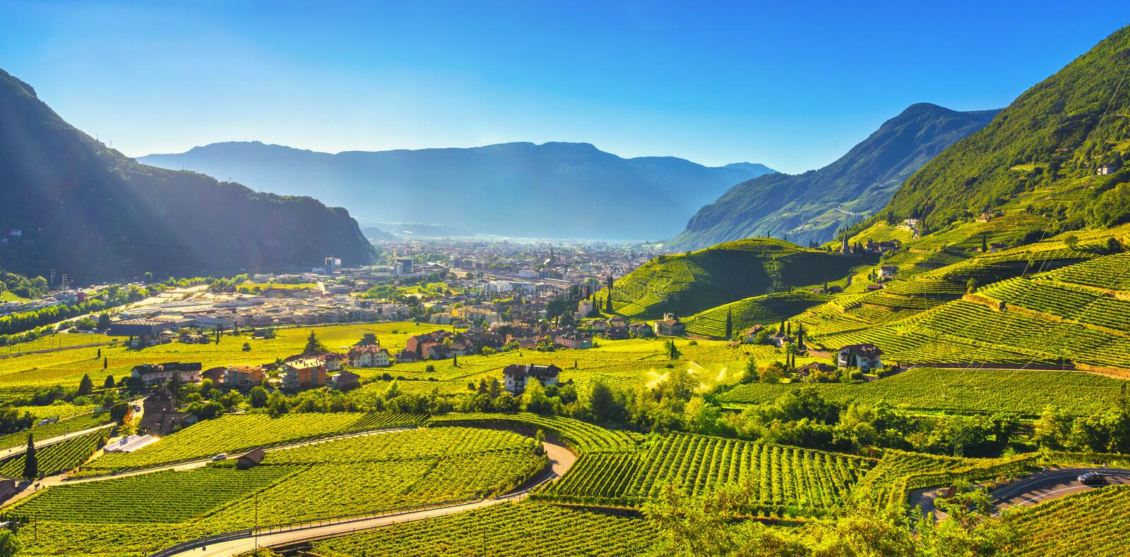 Vineyards view in Santa Maddalena Bolzano. Trentino Alto Adige Sud Tyrol, Italy. Vineyards view in Santa Maddalena Rencio Bolzano. Trentino Alto Adige Sud Tyrol royalty free stock photography