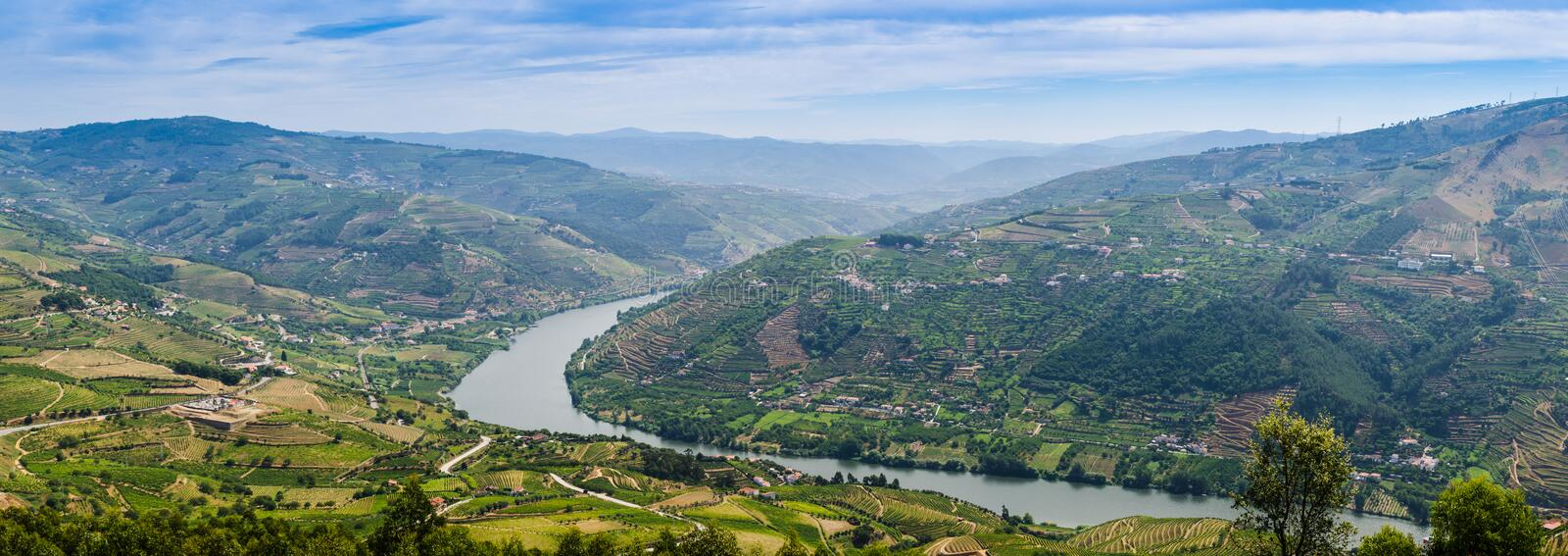 Vineyars in Douro Valley. Terraced vineyards in Douro Valley, Alto Douro Wine Region in northern Portugal, officially designated by UNESCO as World Heritage Site royalty free stock photos