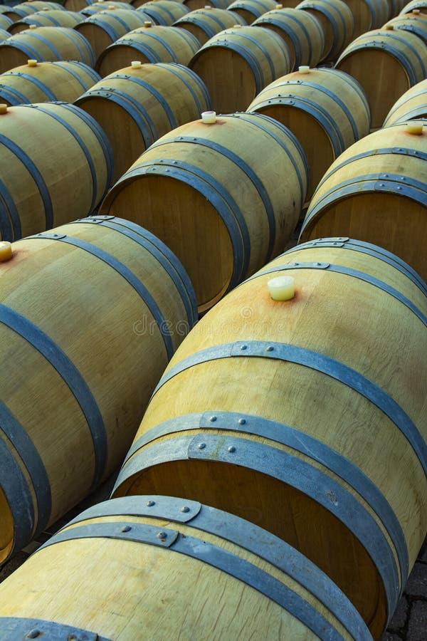 Vinfat i den antika källaren Den håliga vinkällaren med den staplade eken barrels för att mogna rött vin arkivbilder