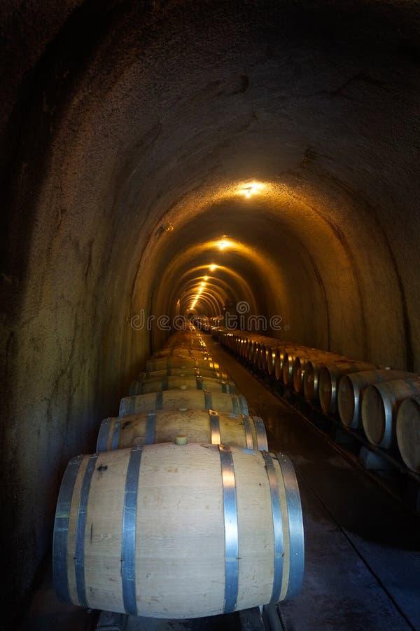 Vinfat i mörk grottalodlinje royaltyfri bild