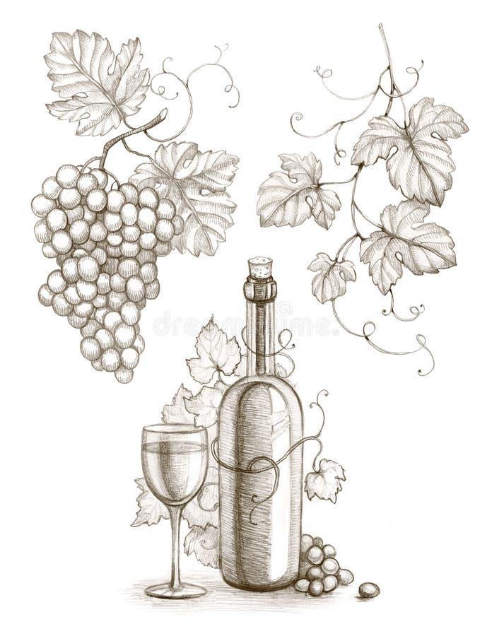 Vinflaska och druva royaltyfri illustrationer
