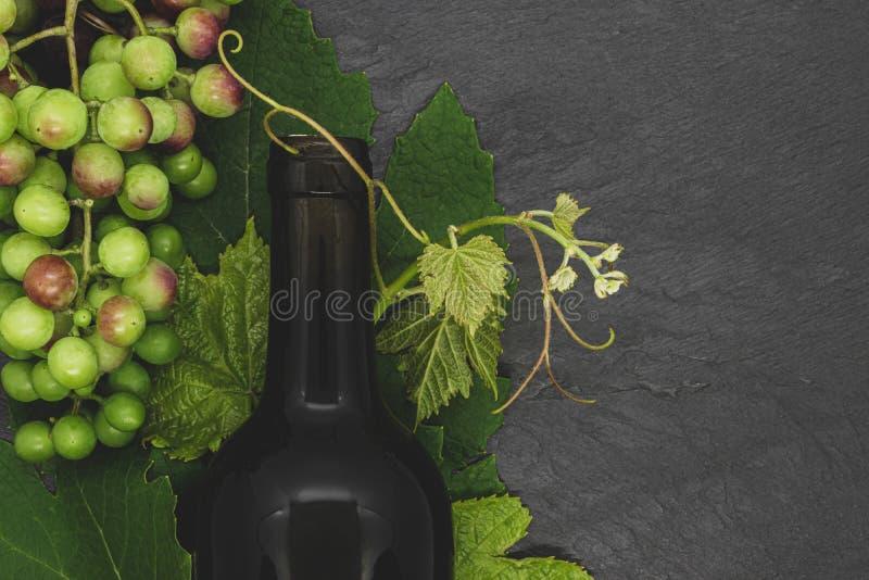 Vinflaskan och den unga druvan fattar med sidor och omogna druvor royaltyfri foto