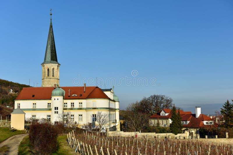 Vingård framme av församlingkyrkan av St Michael och den tyska beställningsslotten Stad av Gumpoldskirchen, lägre Österrike royaltyfri fotografi