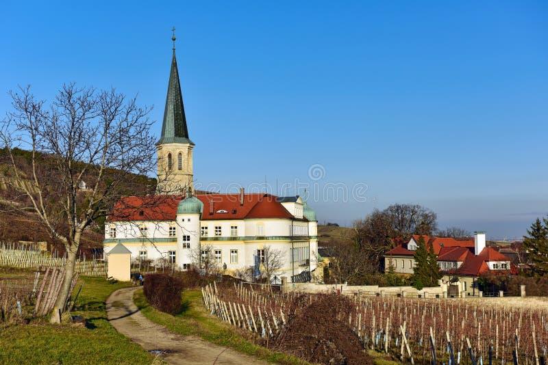 Vingård framme av kyrkan av St Michael och den tyska beställningsslotten Stad av Gumpoldskirchen, lägre Österrike royaltyfri bild
