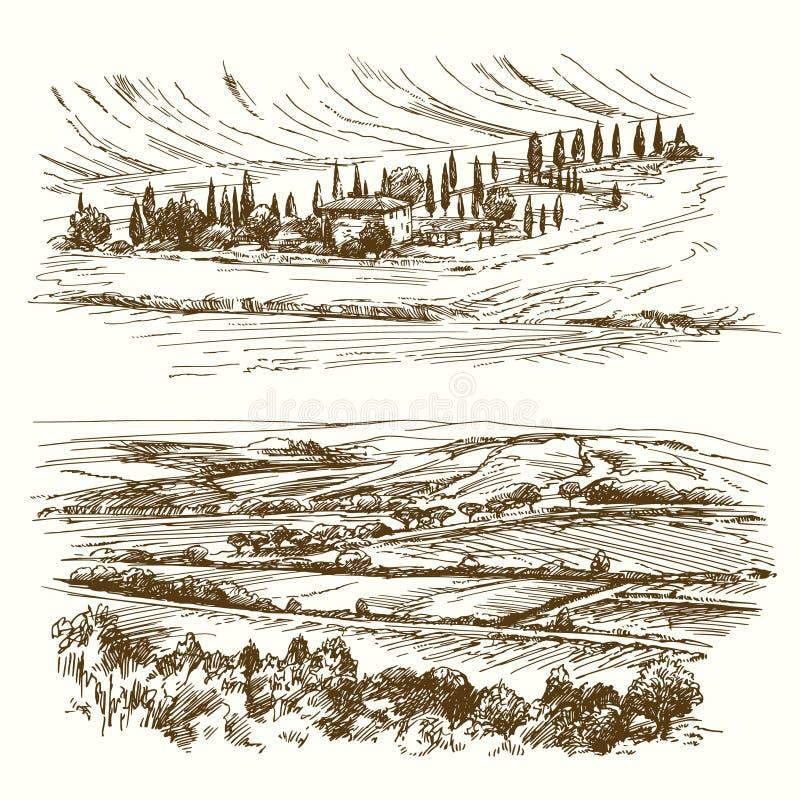 Vingård jordbruks- liggande royaltyfri illustrationer