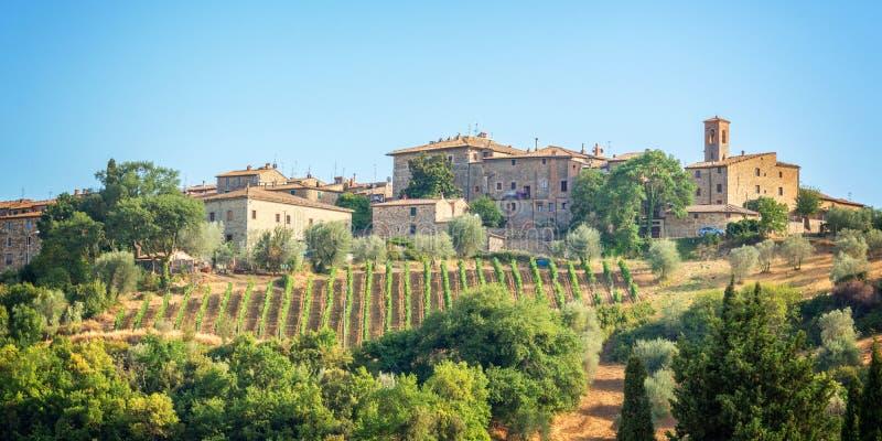 Vingård och by av Montalcino, Tuscany Italien arkivbild