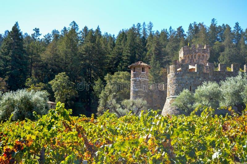 Vingård och slott i Napa Valley royaltyfri foto