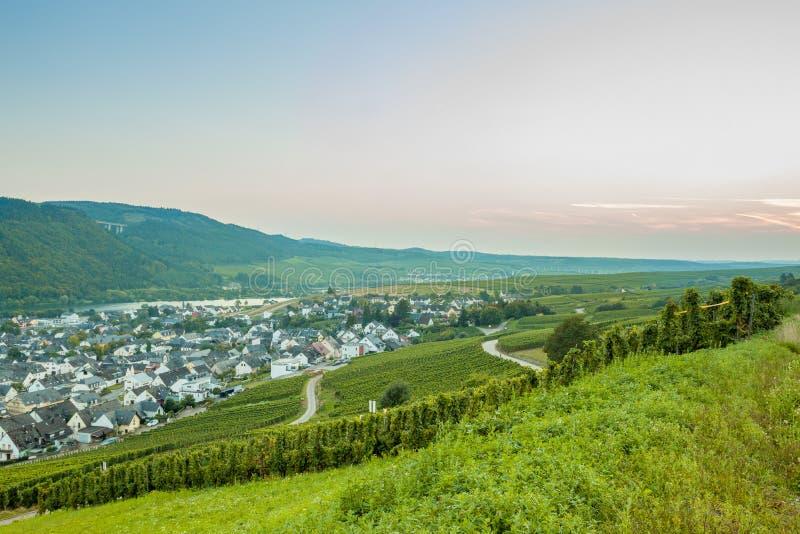 Vingårdarna och den lilla europeiska staden germany arkivfoton