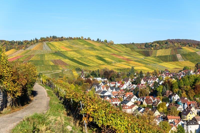 Ving?rdar p? Stuttgart, Uhlbach p? den Neckar dalen - h?rligt landskap i autum i Tyskland royaltyfria foton