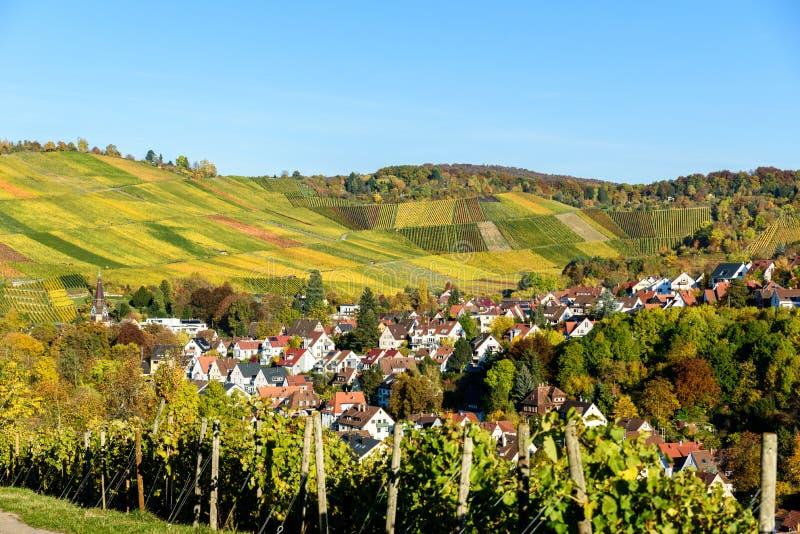 Ving?rdar p? Stuttgart, Uhlbach p? den Neckar dalen - h?rligt landskap i autum i Tyskland arkivfoto