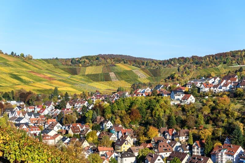 Ving?rdar p? Stuttgart, Uhlbach p? den Neckar dalen - h?rligt landskap i autum i Tyskland royaltyfri foto