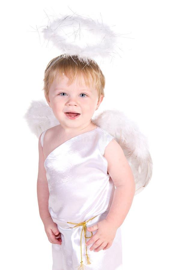 vingar för valentin för st för ängelpojkedag s royaltyfria bilder
