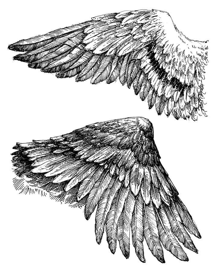 Vingdiagramuppsättning vektor illustrationer