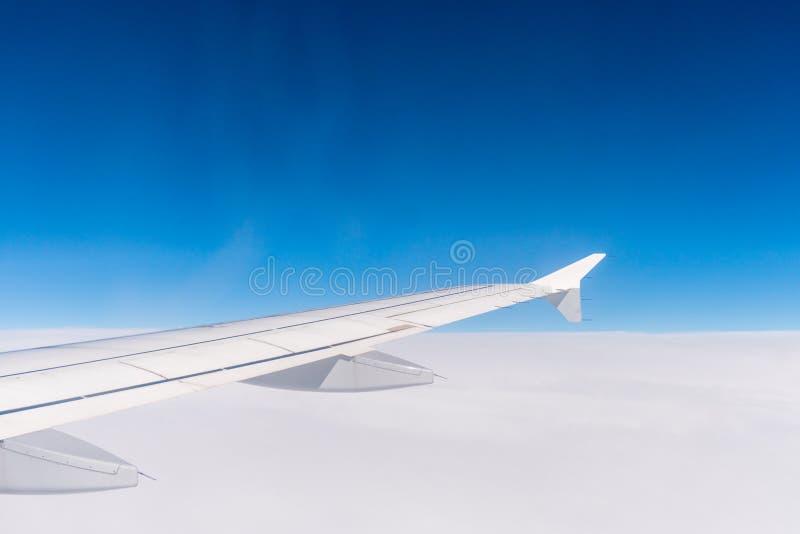 Vinge av ett flygplanflyg ovanför oklarheterna Fönstersikt av den blåa himlen fotografering för bildbyråer