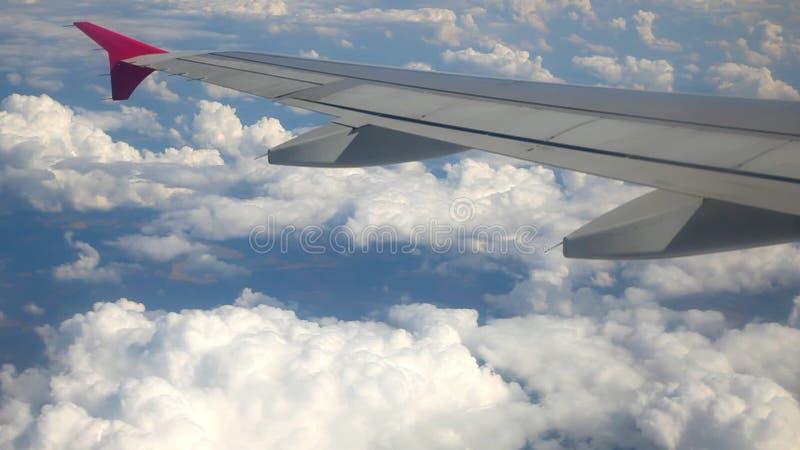 Vinge av flygplanet stock video