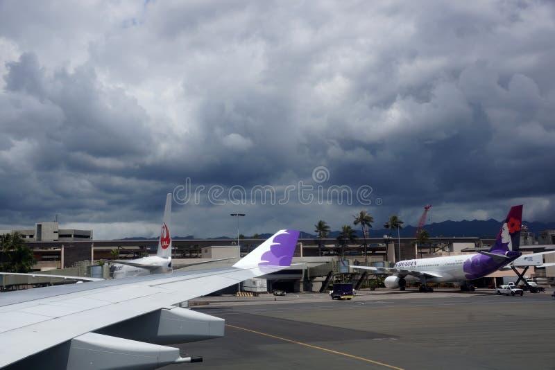 Vinge av nivån och Hawaiian Airlines och Japan Airlines (J-Air) a royaltyfria bilder