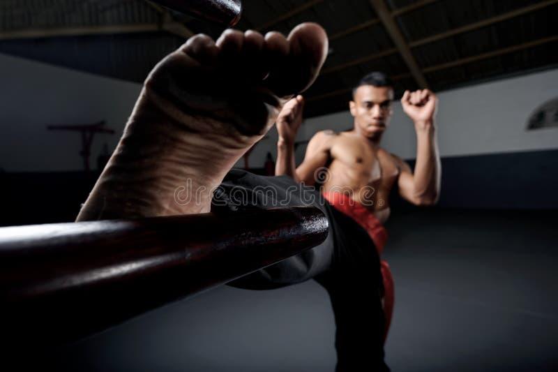 Vinge Chun Kung Fu arkivfoton