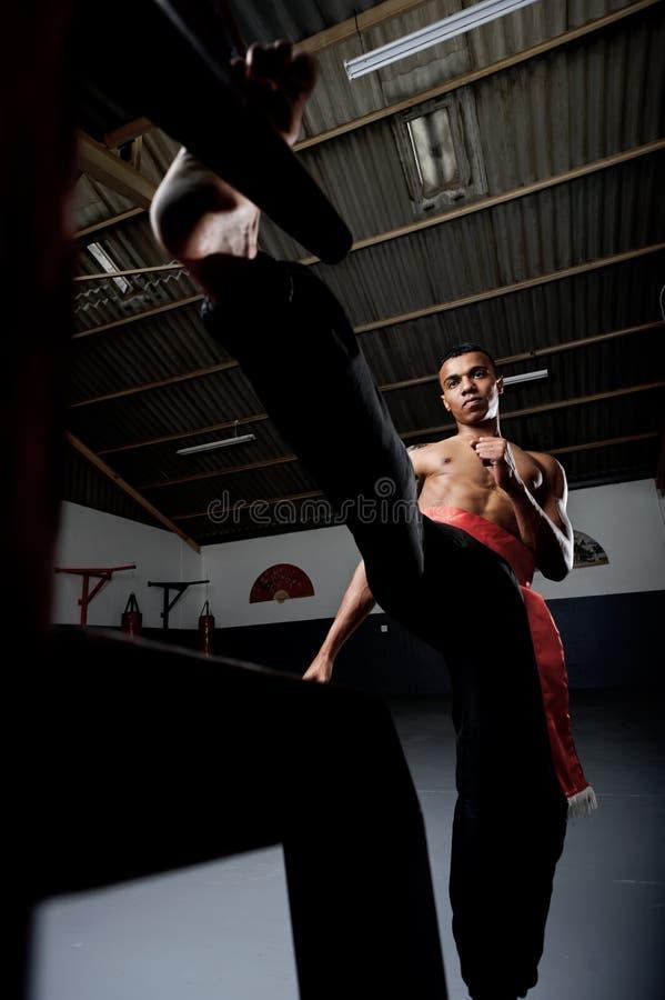 Vinge Chun Kung Fu royaltyfri bild