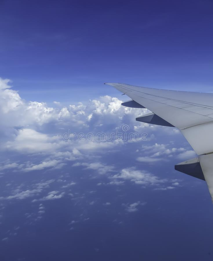 Vinge i flykten ovanför molnen på en solig dag och blå himmel på bakgrund royaltyfri fotografi
