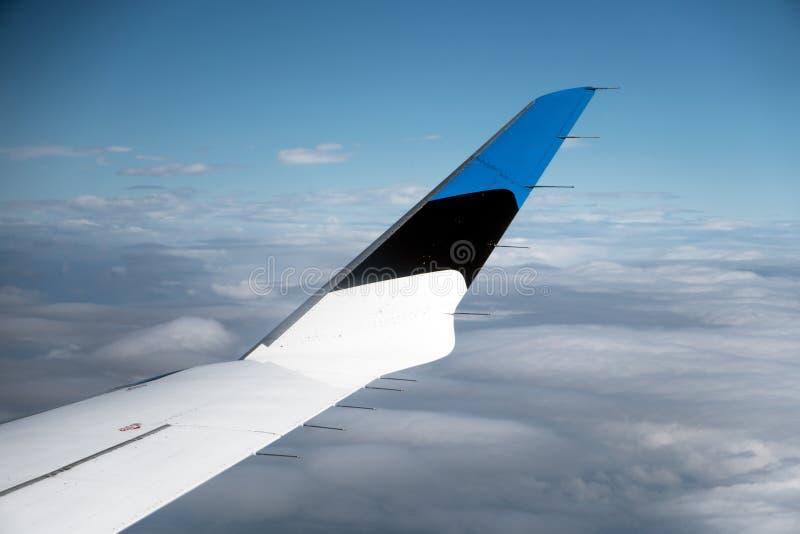 Vinge med den estländska flaggan royaltyfria bilder