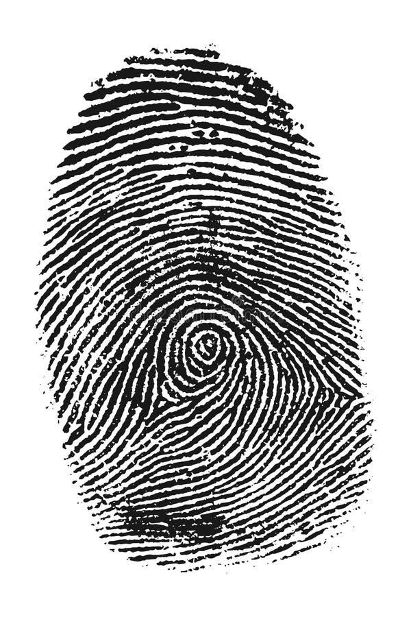 Vingerafdruk vector illustratie