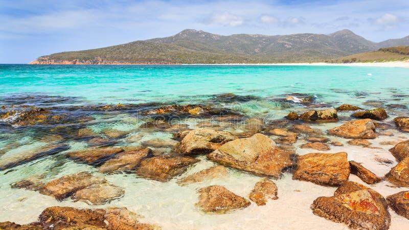 Vinglasfjärd Tasmanien royaltyfri fotografi