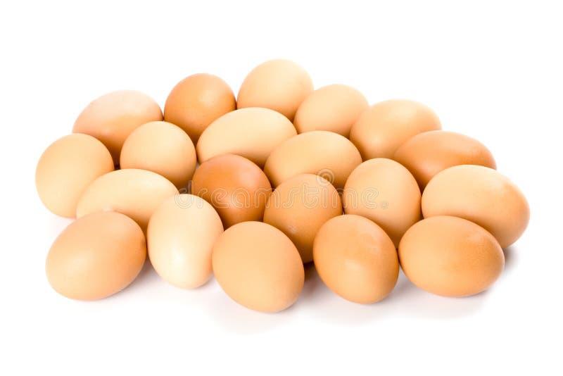 Vingt oeufs bruns image stock