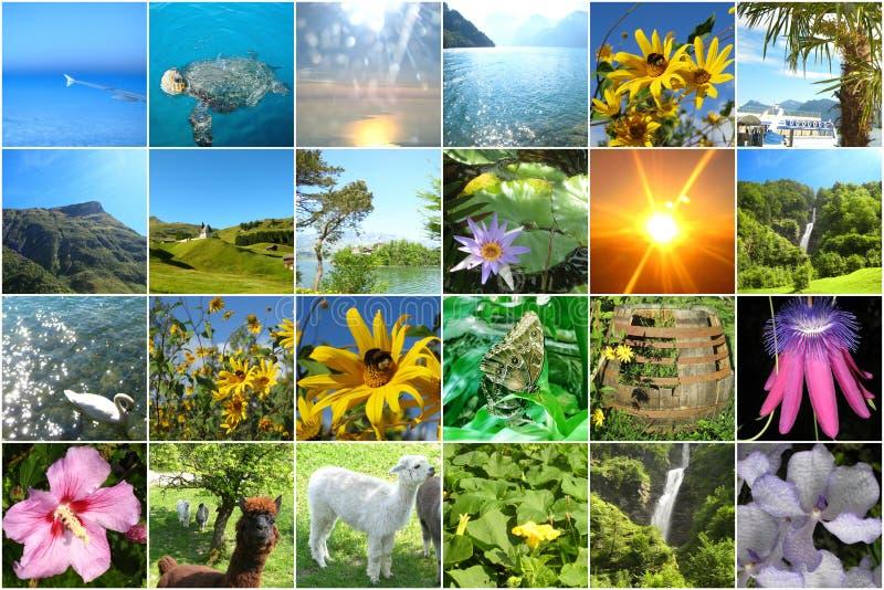 Vingt-quatre images colorées gaies au sujet de voyage pour un calendrier d'avènement ou un jeu de mémoire ou pour concevoir des c photographie stock