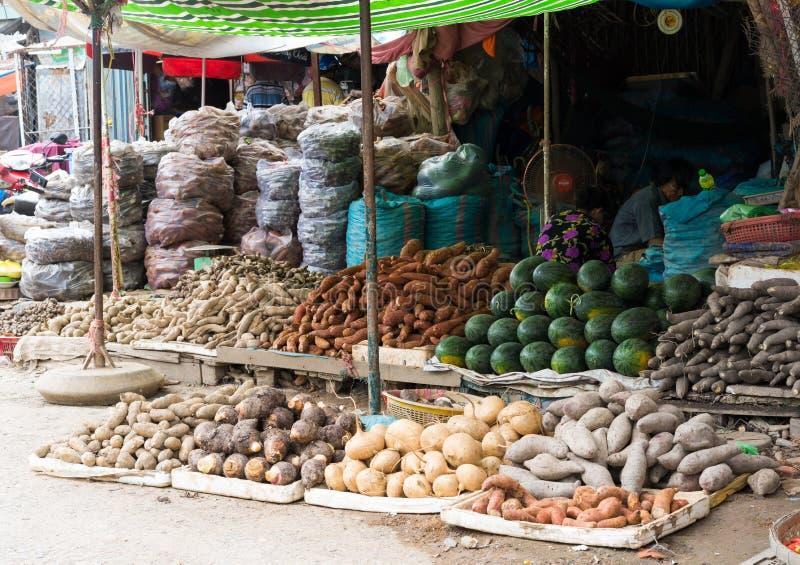 Vinh Long Vietnam - November 30, 2014: Tropiska frukter som visas på den Vinh Long fruktmarknaden, Mekong delta Majoriteten av Vi royaltyfri fotografi