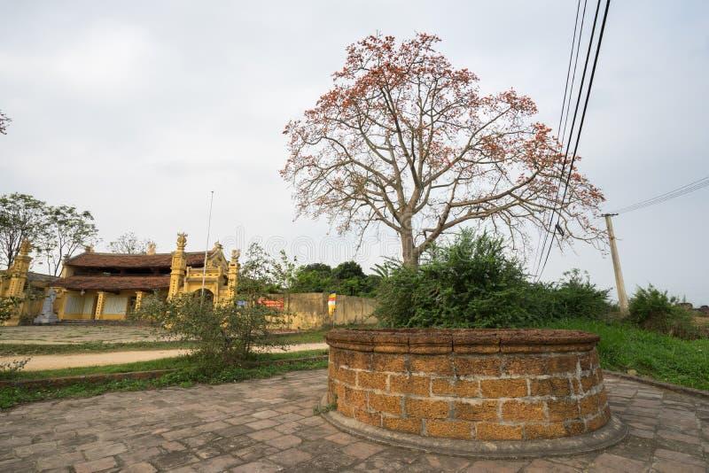 Vinh Phuc, Vietnam - 22 mars 2017 : Vieux bien avec le temple et l'arbre de ceiba de floraison de bombax en secteur de Lap Thach photo libre de droits
