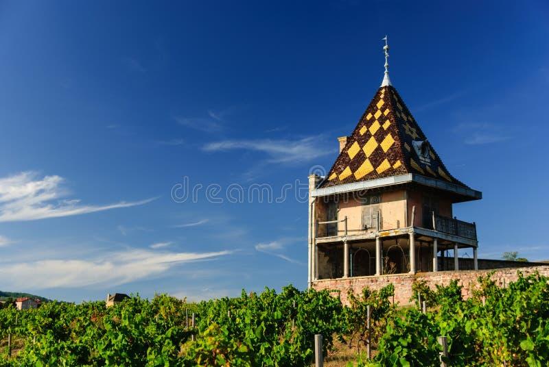 Vinhedo e castelo magnífico Portier construído no estilo arquitetónico de Borgonha. Beaujolais da região, França fotografia de stock