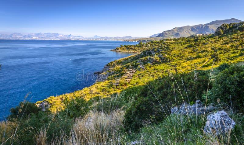 Vinhedo em Sicília, Itália imagem de stock royalty free