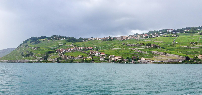 Vinhedo na terraplenagem do lago geneva em Vevey, suíço Riviera, Suíça imagem de stock royalty free