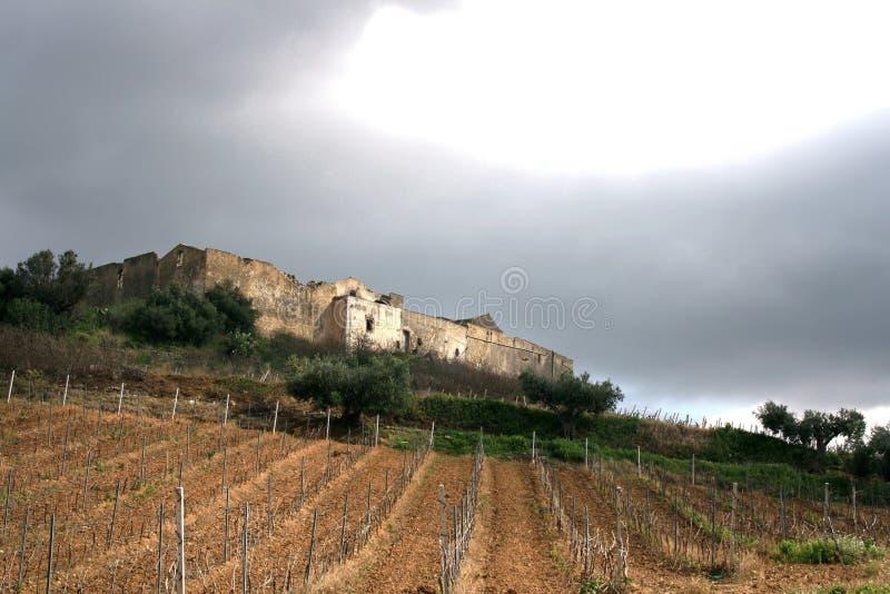 Vinhedos antigos do _ da exploração agrícola da fortaleza do país. Campos & árvores foto de stock royalty free