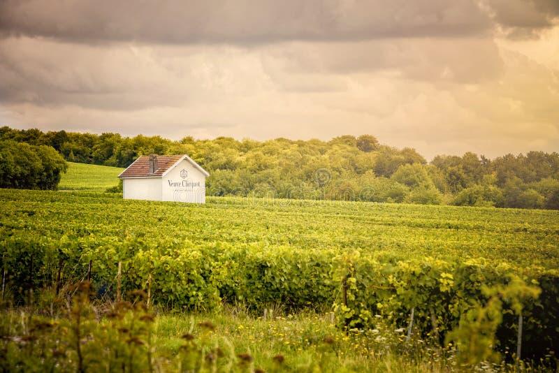 Vinhedos de Champagne, França imagens de stock