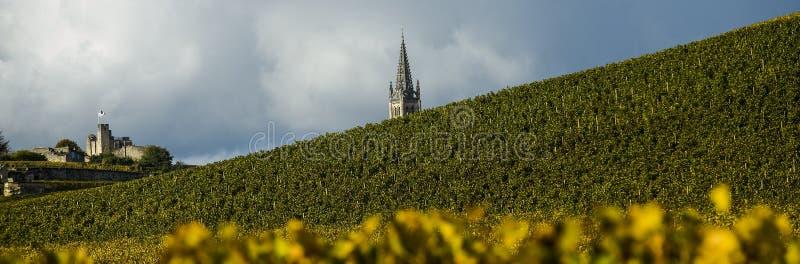 Vinhedos de Saint Emilion, Bordéus, França foto de stock royalty free