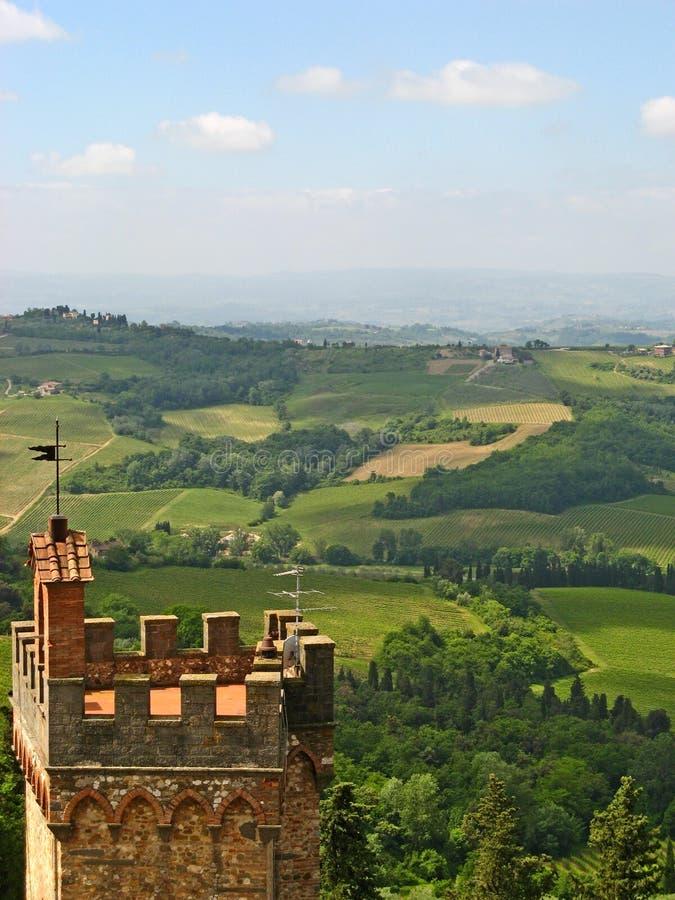 Vinhedos de Tuscan & Olive Groves 01 imagem de stock royalty free