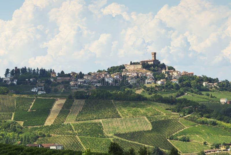Vinhedos em Oltrepo Pavese (Itália) imagem de stock