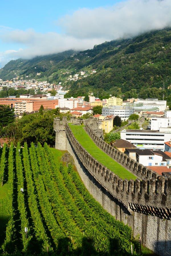 Vinhedos no castelo grandioso, Bellinzona, Suíça imagem de stock royalty free