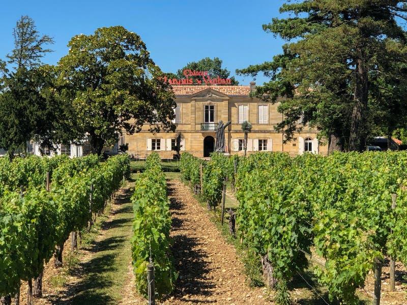 Vinhedos no castelo Marquis de Vaban - Blaye - França imagens de stock