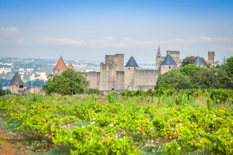 Vinhedos que crescem fora da fortaleza medieval de Carcassonne me fotos de stock royalty free