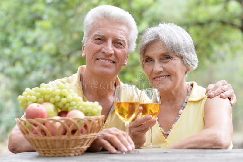 Vinho bebendo dos pares idosos imagens de stock