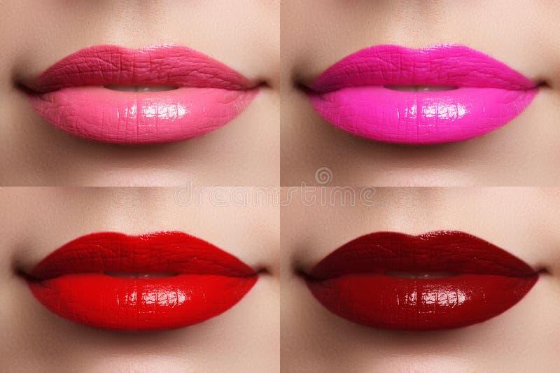 Vinho bonito da cor da coleção dos bordos, fúcsia, rosa, vermelho fotos de stock