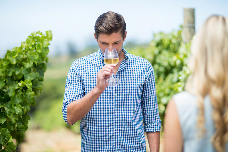 Vinho branco bebendo de homem novo foto de stock