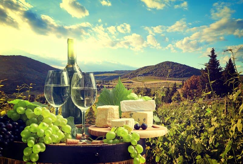 Vinho branco com o tambor no vinhedo em Toscânia, Itália imagens de stock royalty free