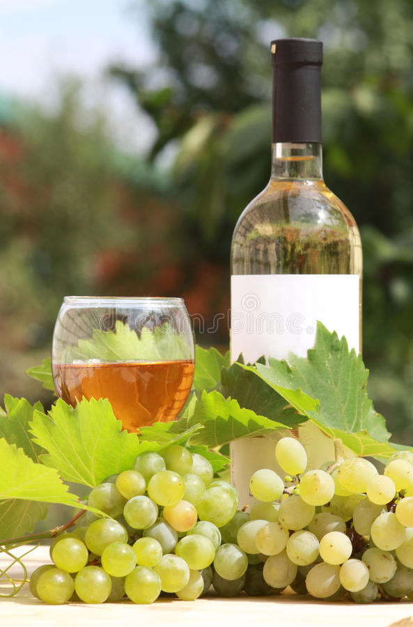 Vinho branco e composição das uvas imagem de stock