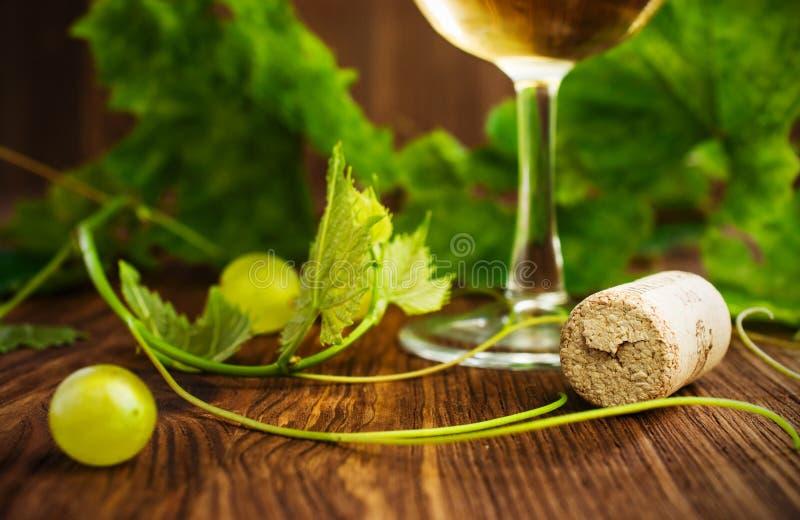 Vinho branco em um vidro com close-up da videira imagem de stock